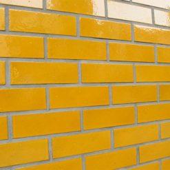 Eco-Glazed Brick Slip
